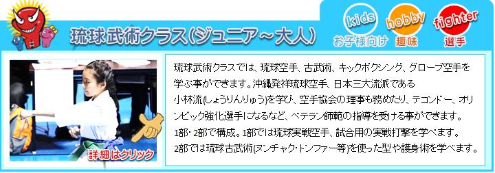 横浜キックボクシングジム 琉球空手 新空手 キックボクシング ムエタイの紹介
