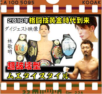 横浜 子供 女子 キックボクシングジム TSKjapan K-1 Knock out Muaythai