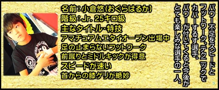横浜 子供 女子 キックボクシングジム TSKjapan