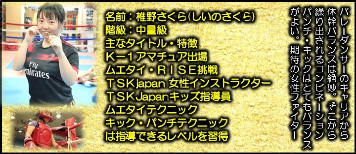 横浜キックボクシングジム TSKjapan代表 勝山泰士 横浜キックボクシング 子供 女子 キックボクシングジム TSKjapan 新K-1伝説 Krush ムエタイ KNOCK OUT 横浜 子供  女性 キックボクシングジム TSKjapan 横浜キックボクシングジム TSKjapan 琉球武術クラス  シニアキック 中学生キック 女子キック キッズキック TSKjapanダイエット シャイプアップ 女子クラス